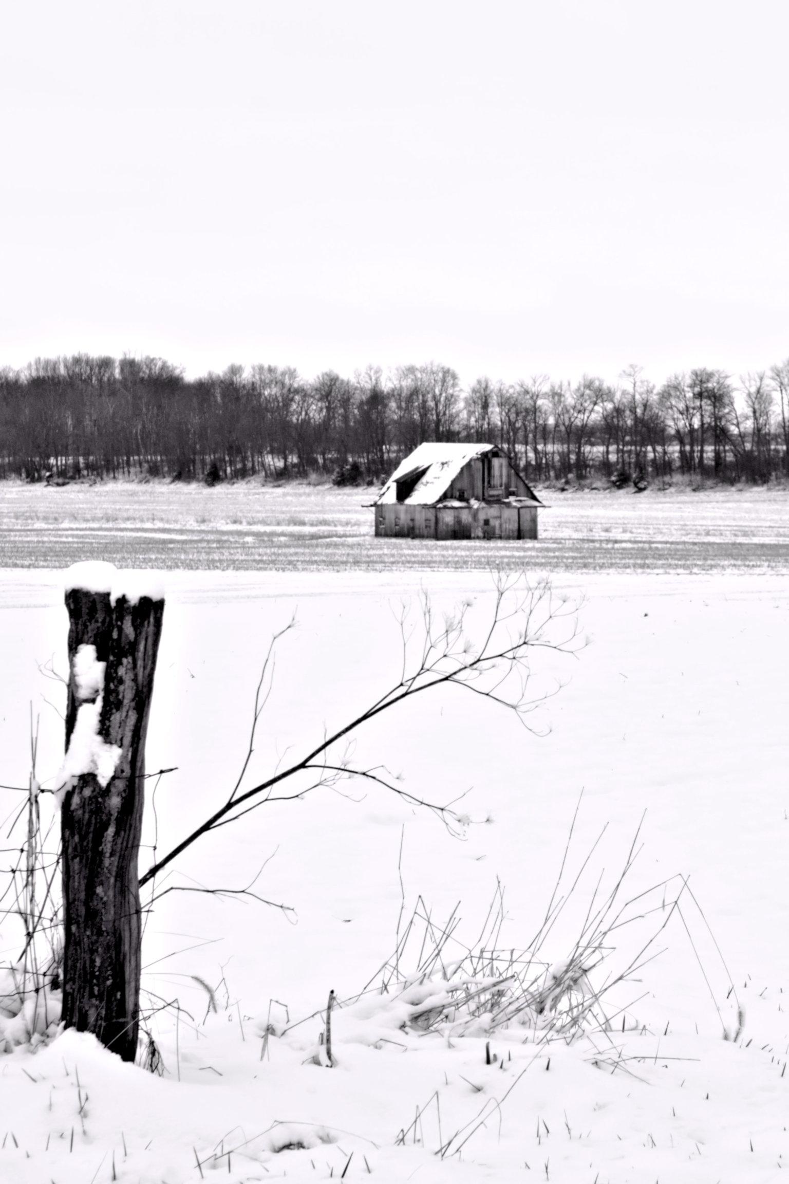 B&W barn in winter