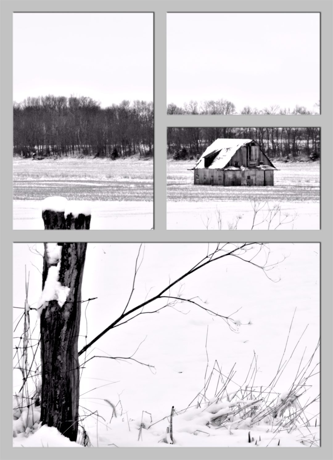 B&W Barn in Winter SplitImage©