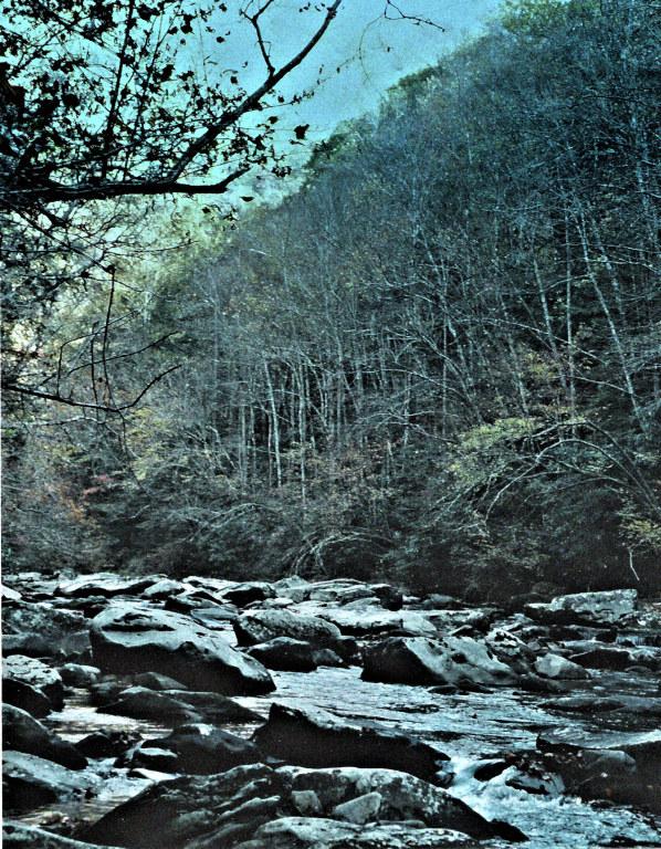 smoky mountain stream2